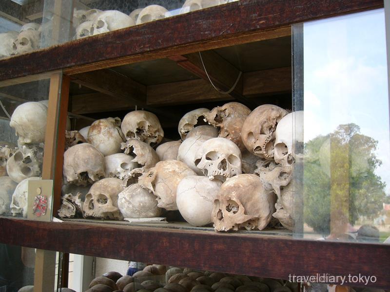骸骨の画像 p1_33