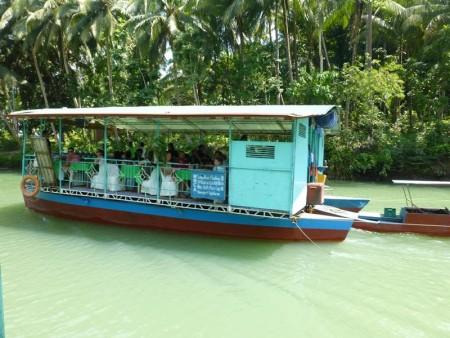 フィリピン  ボホール島観光_悪い目をしたターシャを見つけた