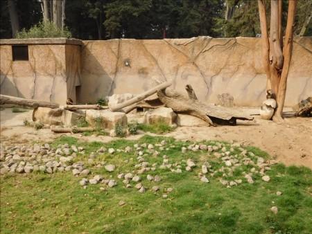 グアテマラ  ケツァルテナンゴ(シェラ)で無料の動物園 【グアテマラ旅行】