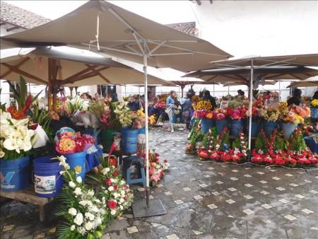 エクアドル  クエンカの街をブラブラ 【エクアドル】