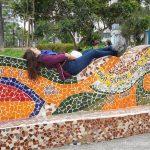 ペルー  バジェスタス島ツアーにコレクティーボを利用して個人で参加 【ペルー】