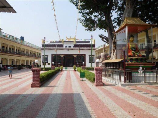 インド  仏教4大聖地「サールナート」_各国の寺院を見学【バラナシ】