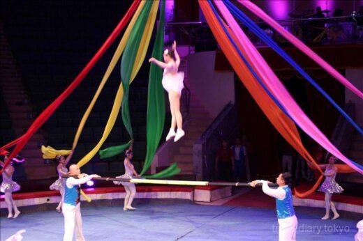 ベトナム  ハノイでサーカス_犬が果敢に火の輪をジャンプ【ベトナム】