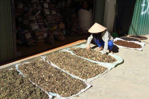 ベトナム  人気のトレッキングコース「カットカット村」を少しだけ散策【サパ】